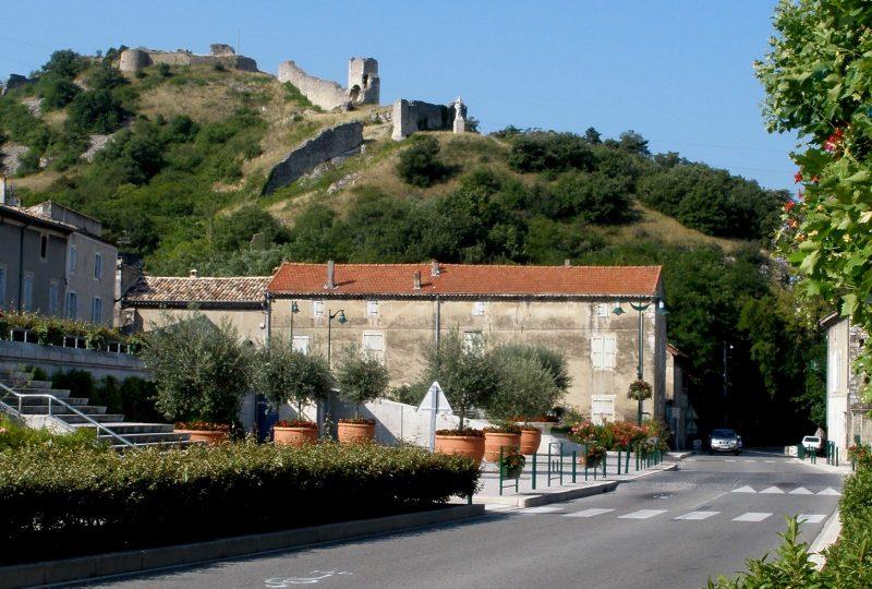 Porte de Provence à Châteauneuf-du-Rhône - 8