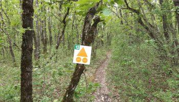 Sentier balisé entre champs et bois
